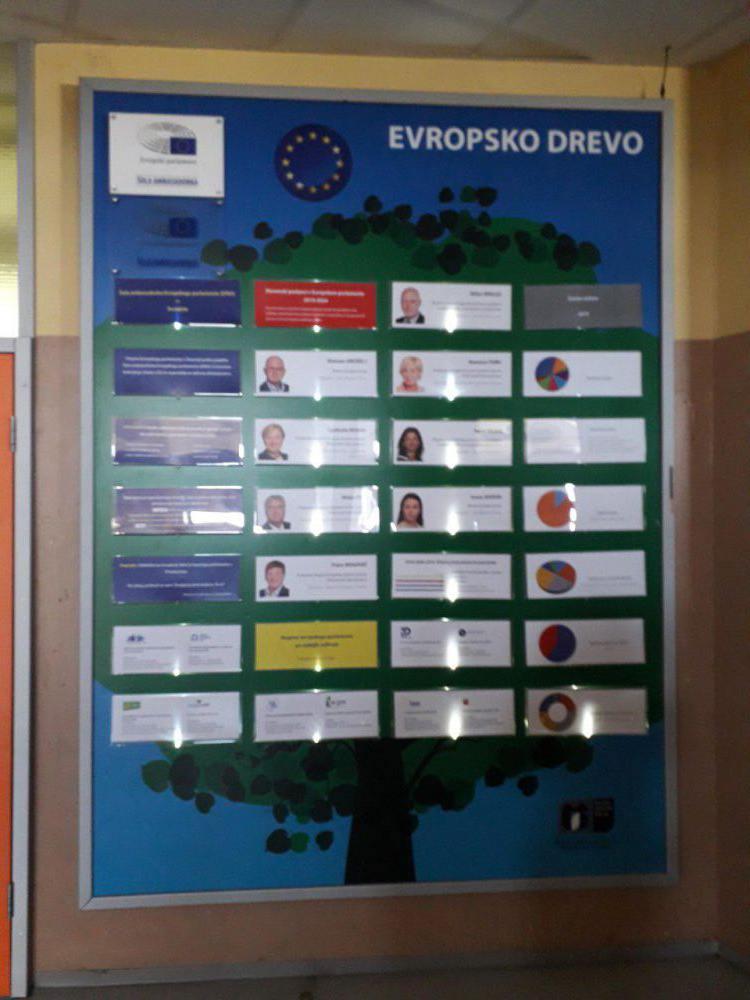 evropsko-drevo